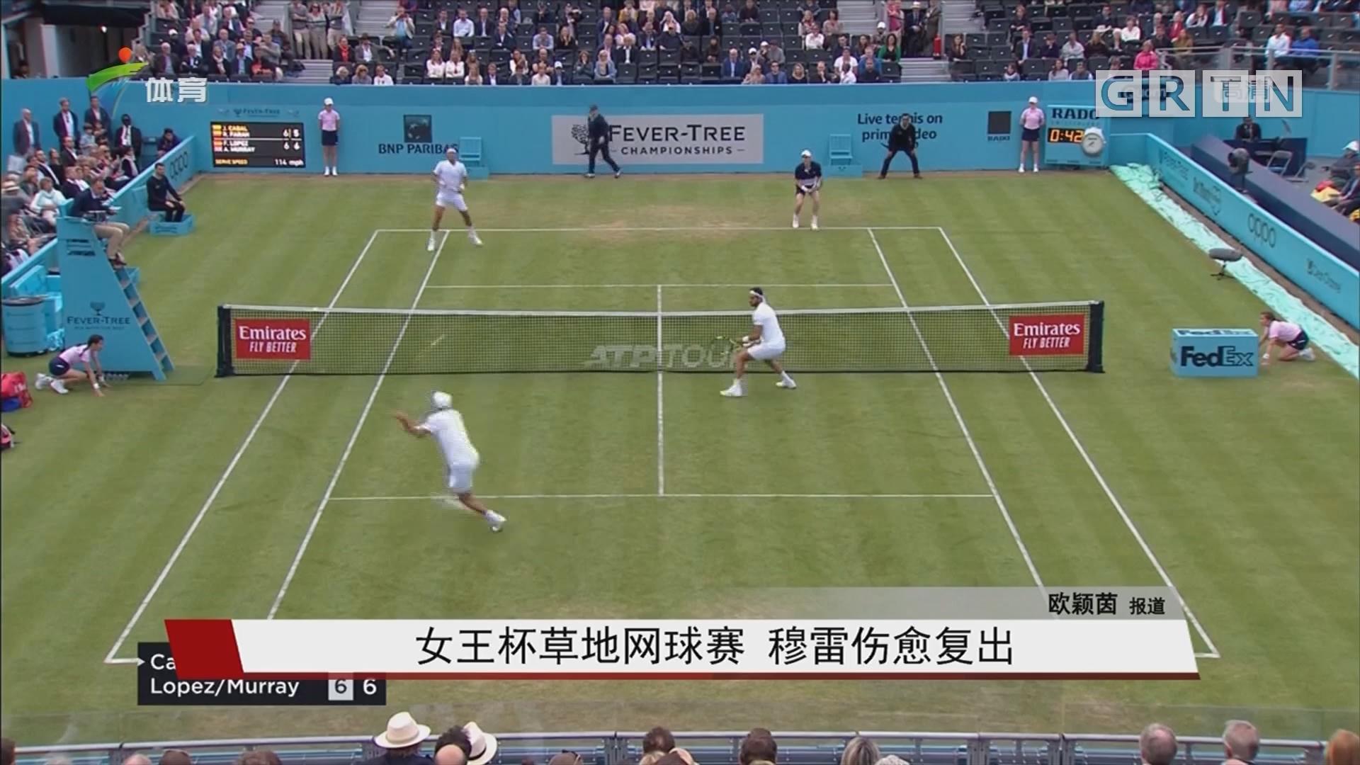 女王杯草地网球赛 穆雷伤愈复出