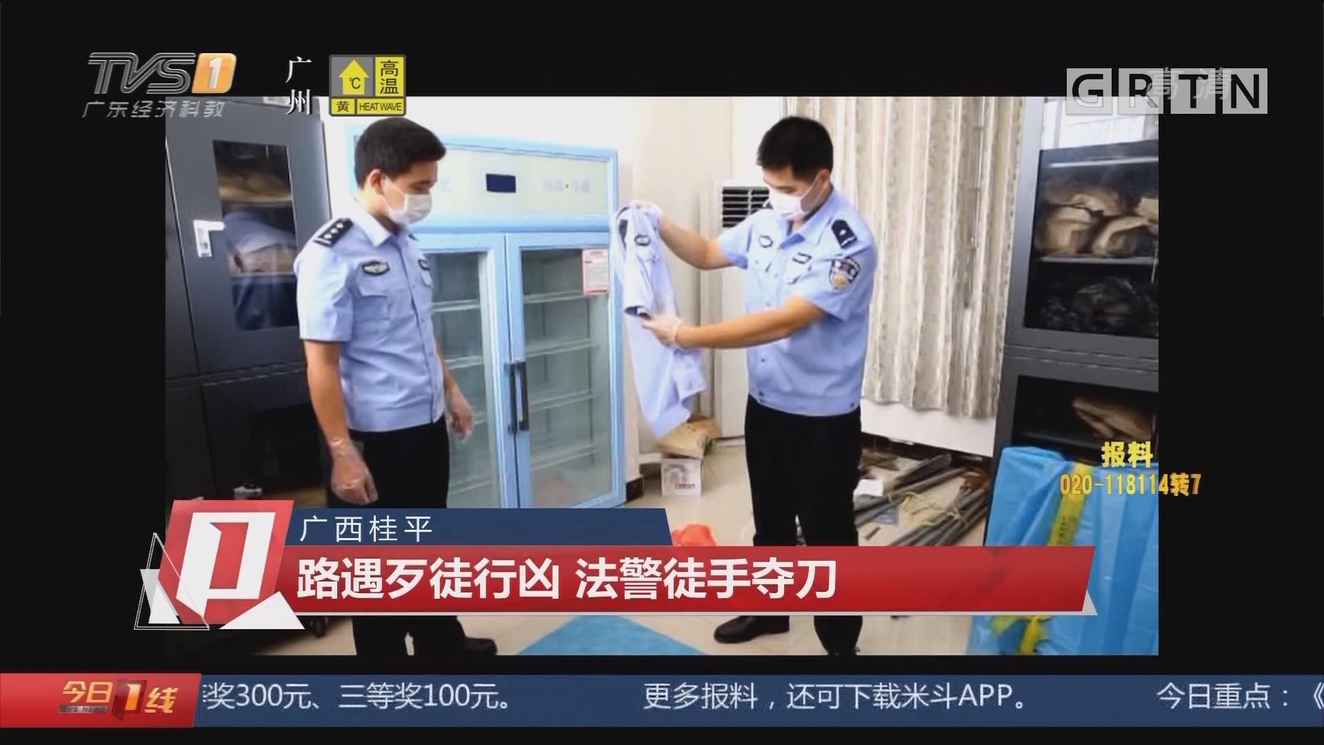 广西桂平:路遇歹徒行凶 法警徒手夺刀