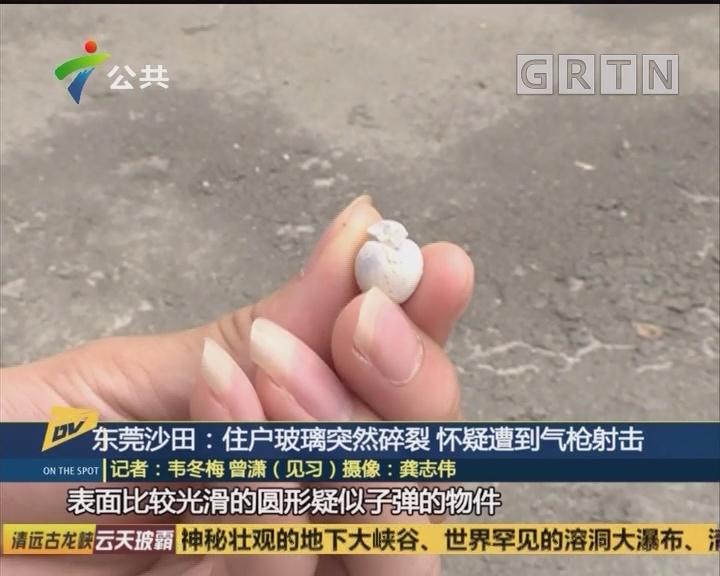 东莞沙田:住户玻璃突然碎裂 怀疑遭到气枪射击