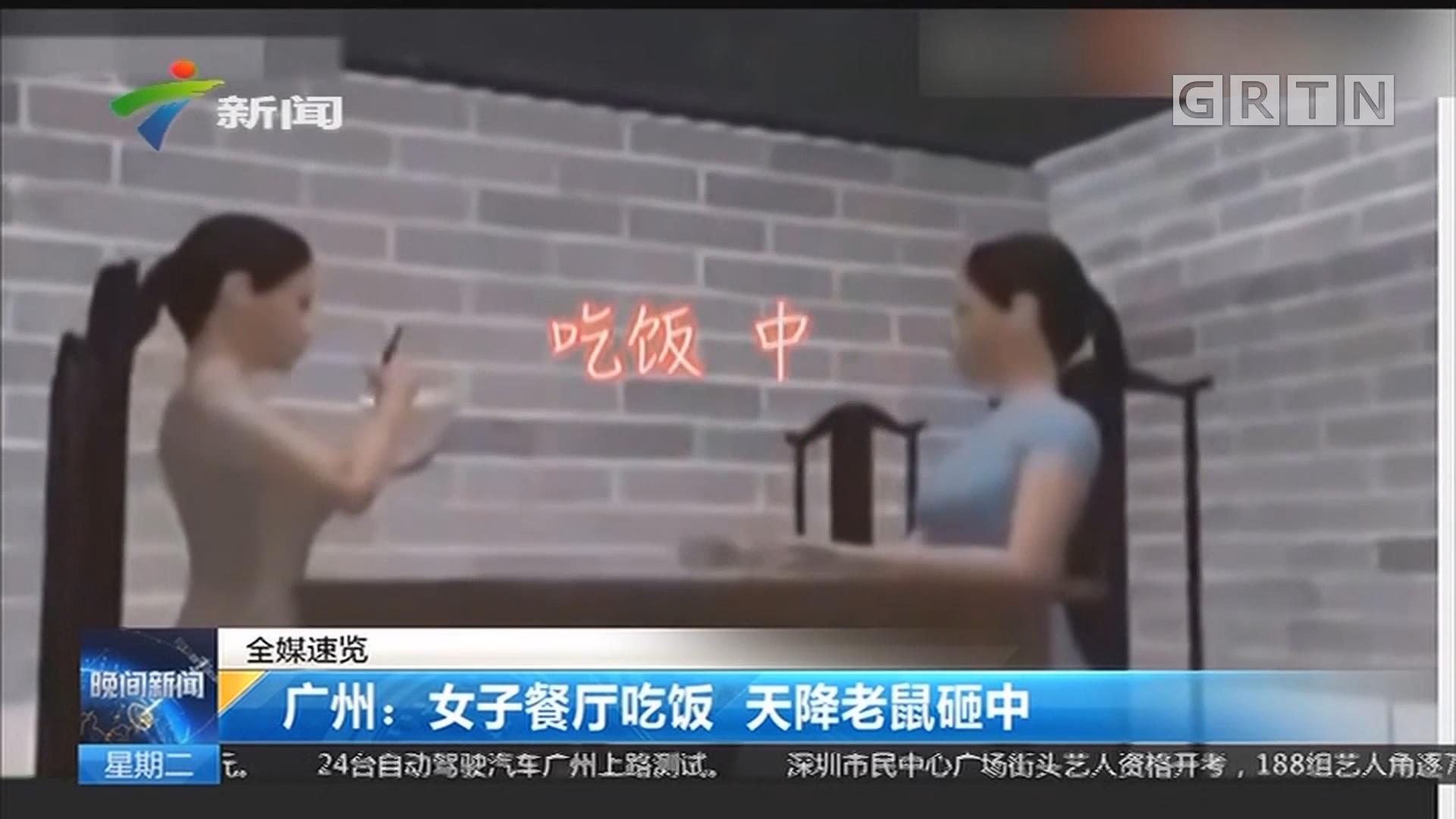 广州:女子餐厅吃饭 天降老鼠砸中