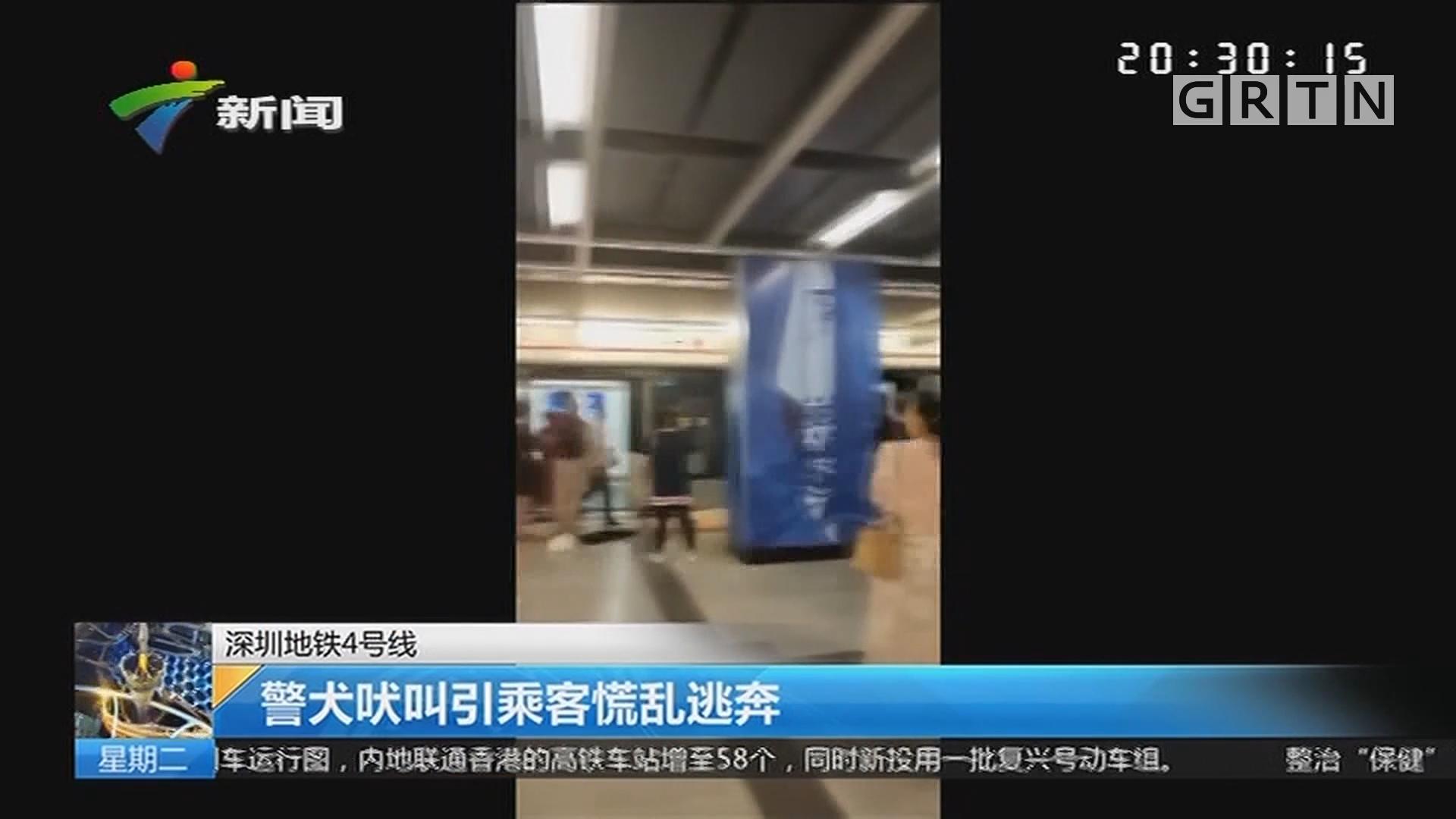 深圳地铁4号线:警犬吠叫引乘客慌乱逃奔