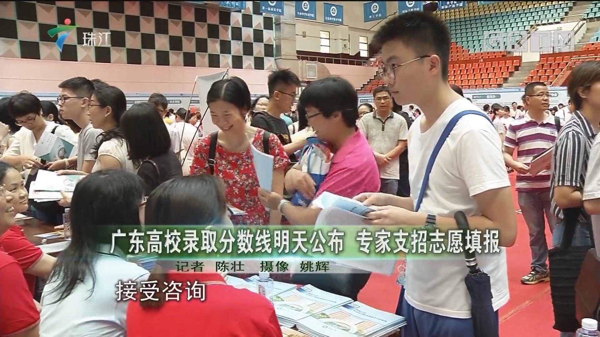 广东高校录取分数线明天公布 专家支招志愿填报