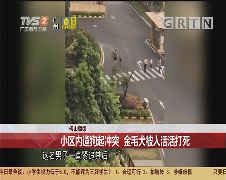 佛山顺德:小区内遛狗起冲突 金毛犬被人活活打死