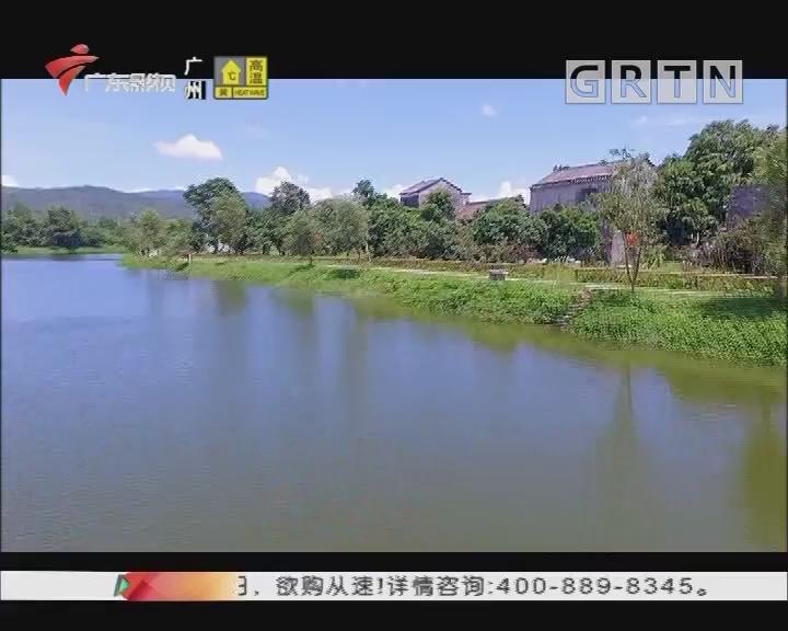 [2019-06-20]健康生活:野趣大湾区