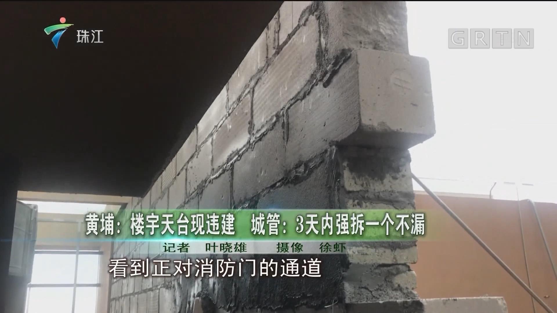黄埔:楼宇天台现违建 城管:3天内强拆一个不漏