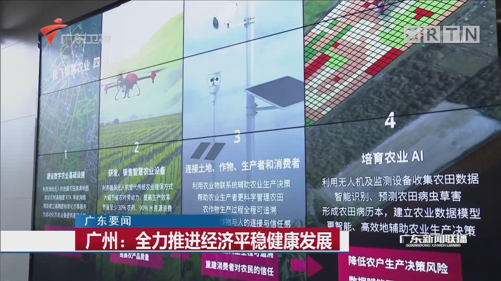 广州:全力推进经济平稳健康发展