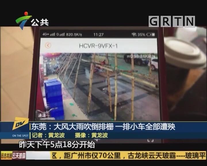 东莞:大风大雨吹倒排柵 一排小车全部遭殃