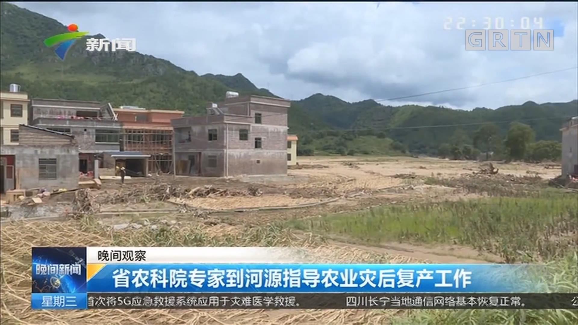 省农科院专家到河源指导农业灾后复产工作