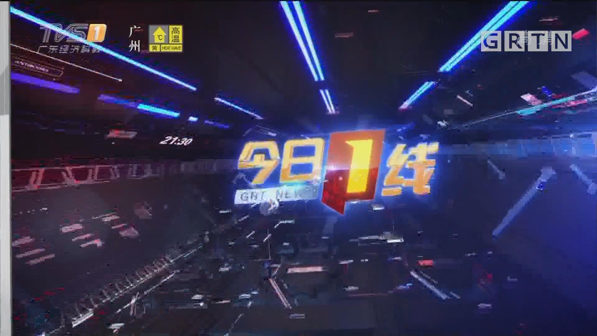 [HD][2019-06-29]今日一线:佛山顺德:金毛咬死贵宾 遭其主人追打致死