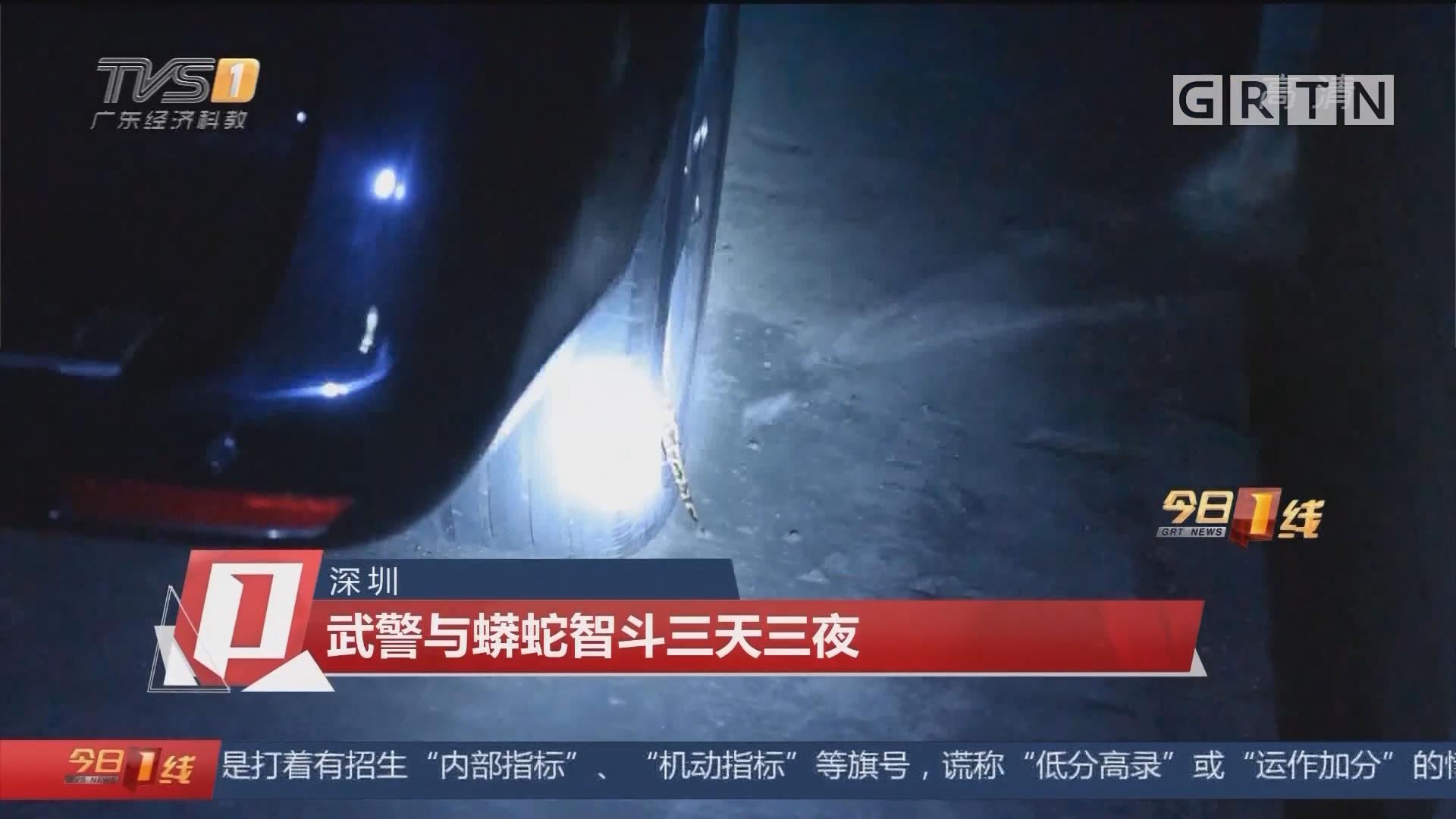 深圳:武警与蟒蛇智斗三天三夜