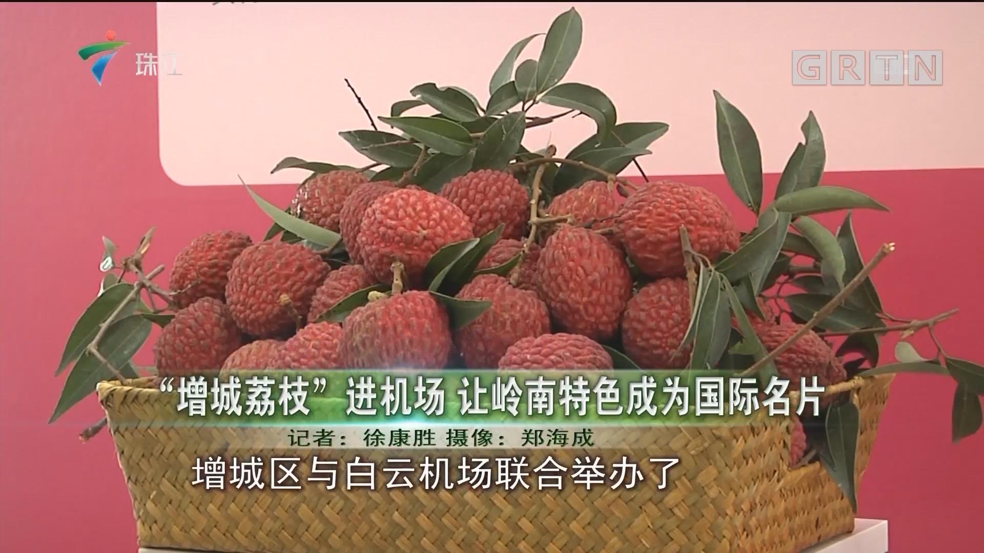 """""""增城荔枝""""进机场 让岭南特色成为国际名片"""