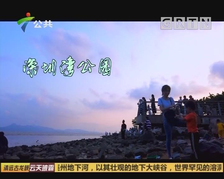 我冇水你:深圳湾公园