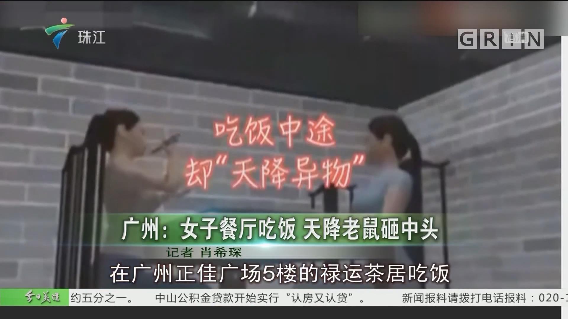广州:女子餐厅吃饭 天降老鼠砸中头