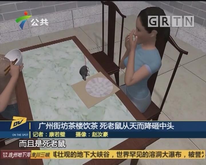 广州街坊茶楼饮茶 死老鼠从天而降砸中头