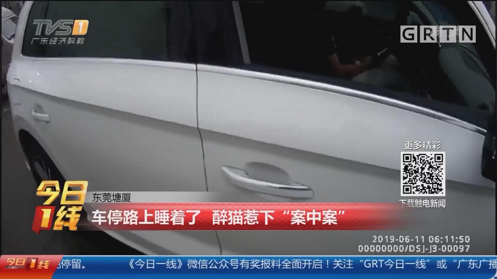 """东莞塘厦:车停路上睡着了 醉猫惹下""""案中案"""""""
