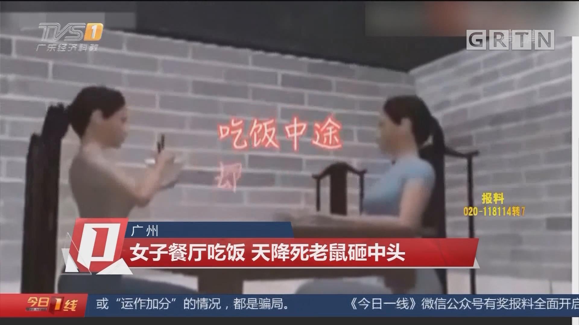 广州:女子餐厅吃饭 天降死老鼠砸中头