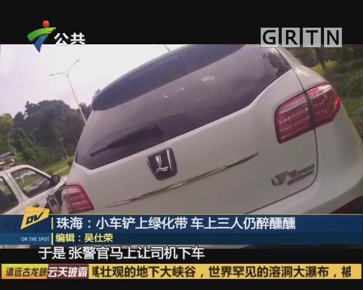 珠海:小车铲上绿化带 车上三人仍醉醺醺