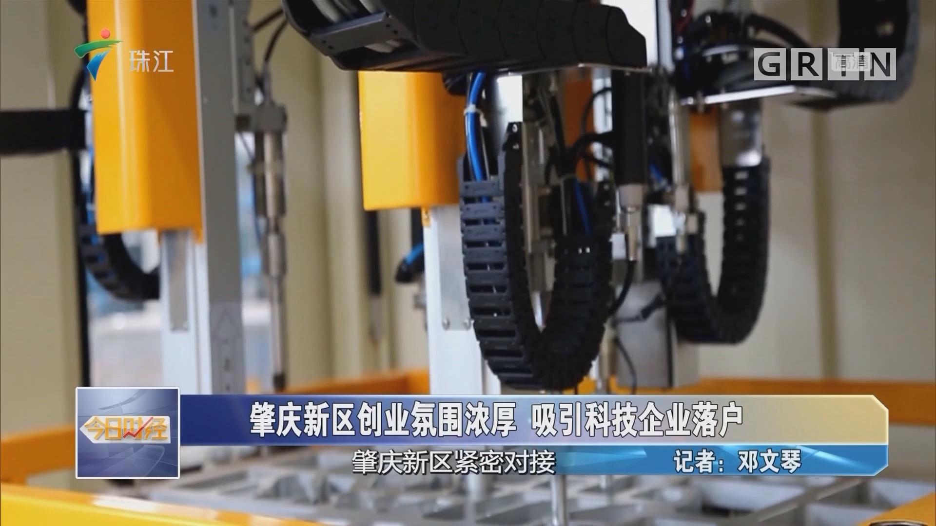 肇慶新區創業氛圍濃厚 吸引科技企業落戶