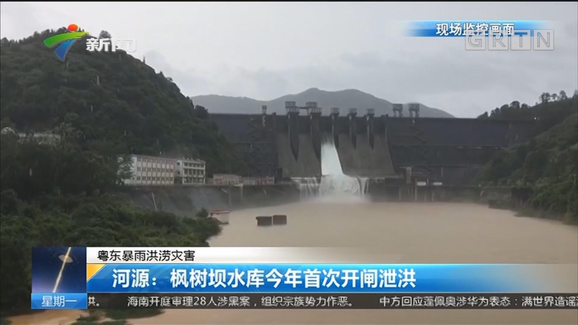 粤东暴雨洪涝灾害 河源:枫树坝水库今年首次开闸泄洪