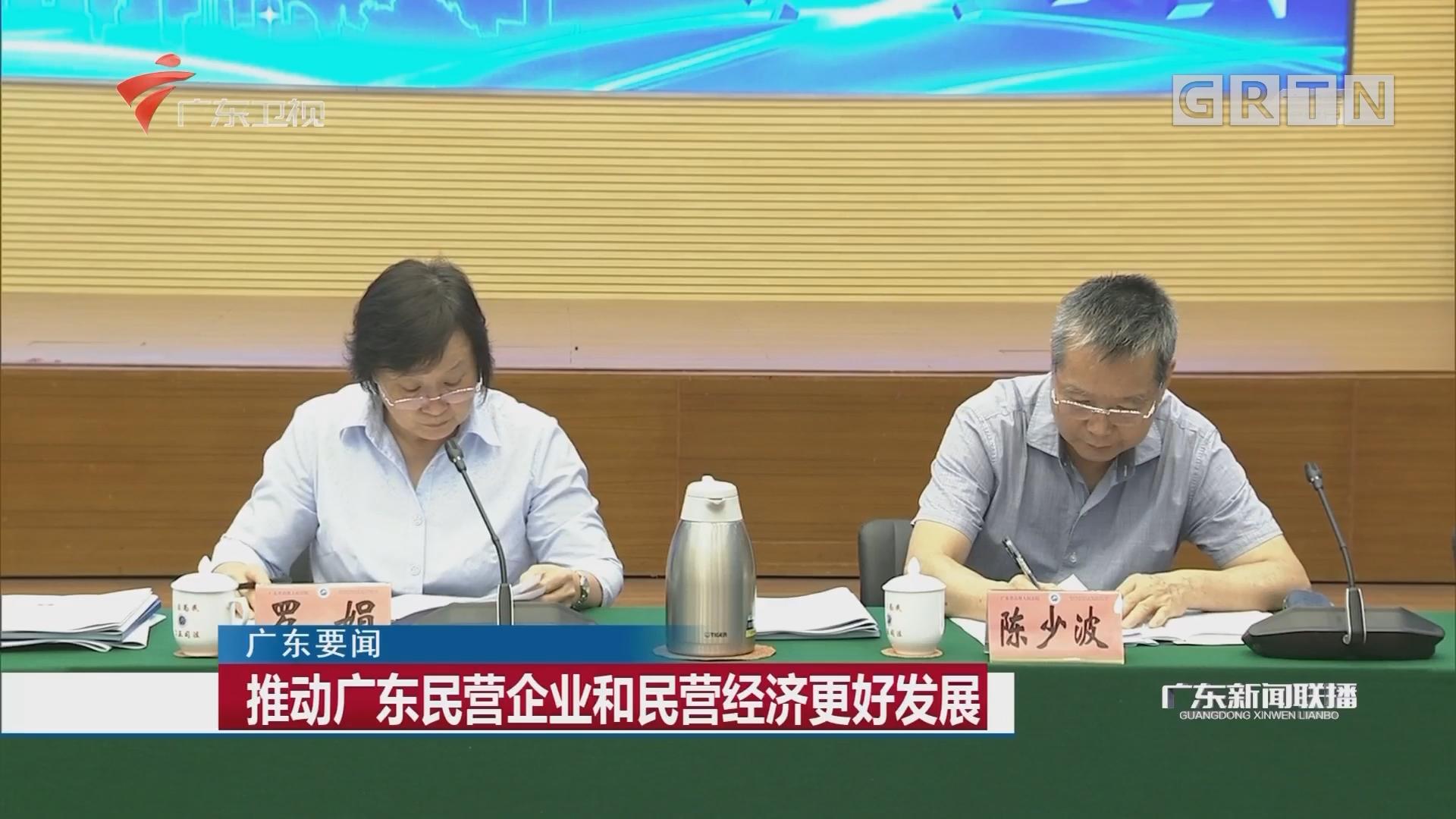 推动广东民营企业和民营经济更好发展