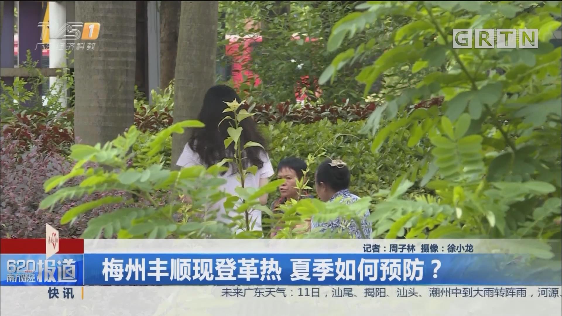 梅州丰顺现登革热 夏季如何预防?