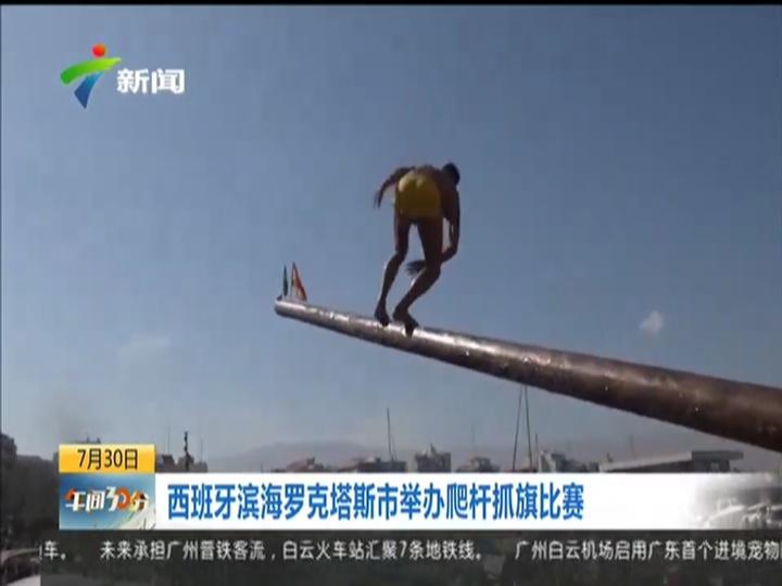 西班牙滨海罗克塔斯市举办爬杆抓旗比赛