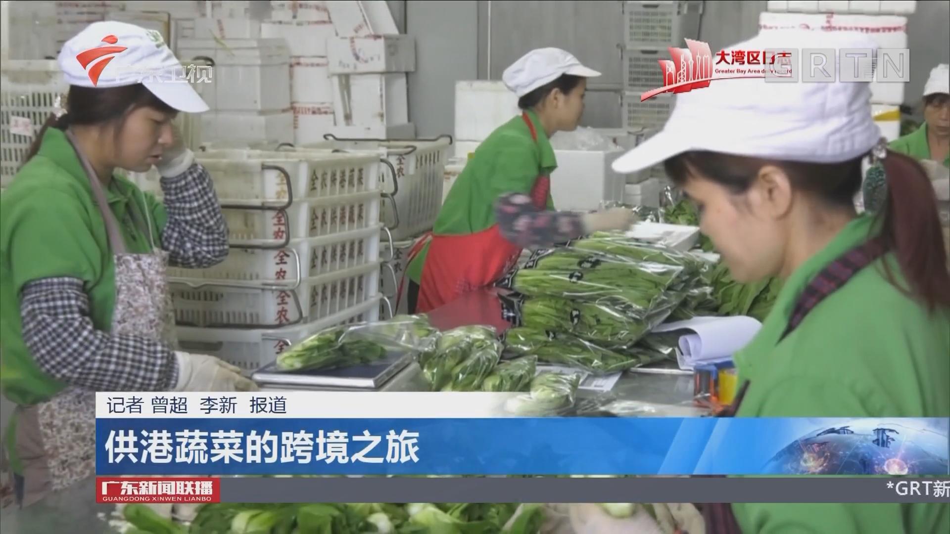 供港蔬菜的跨境之旅