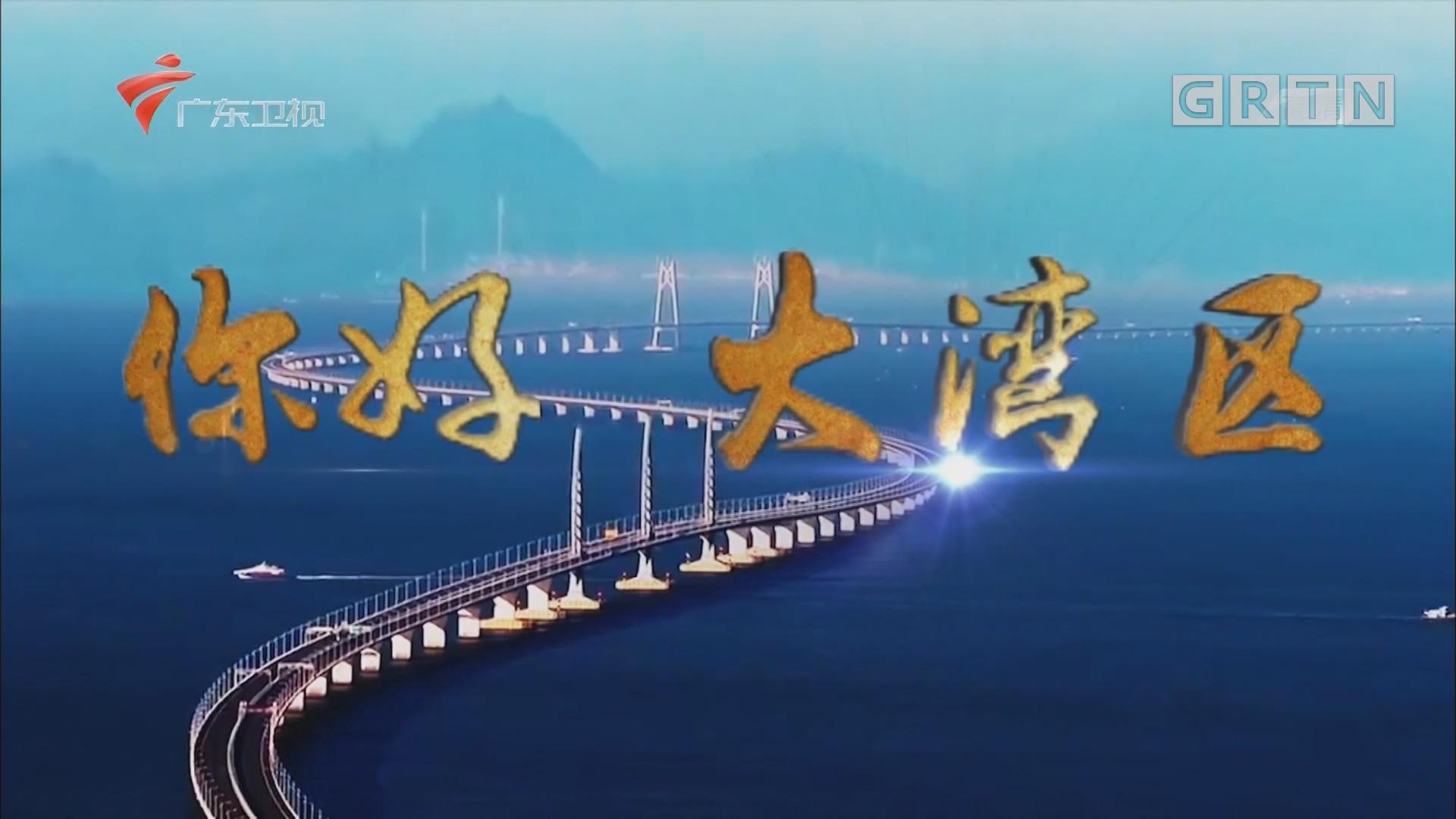 [HD][2019-07-02]你好 大湾区:大湾区发展内核:协同 合作 包容