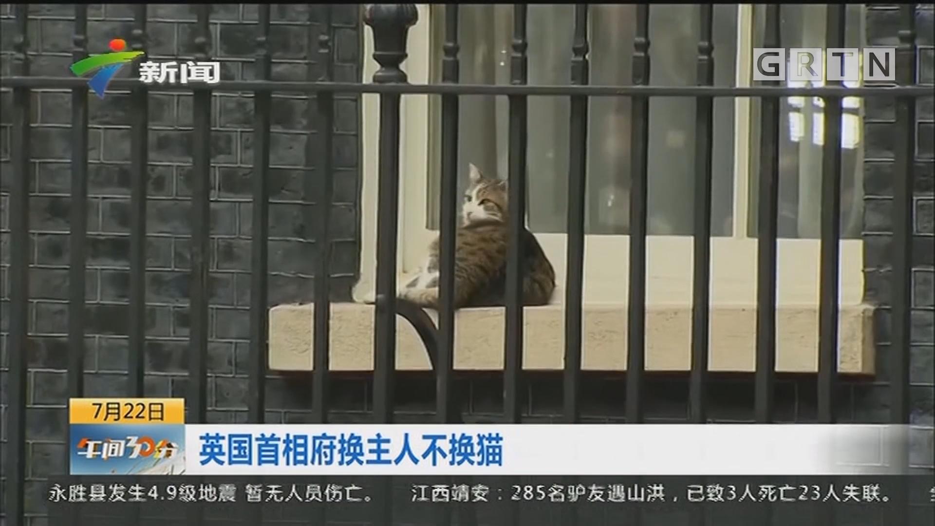 英国首相府换主人不换猫