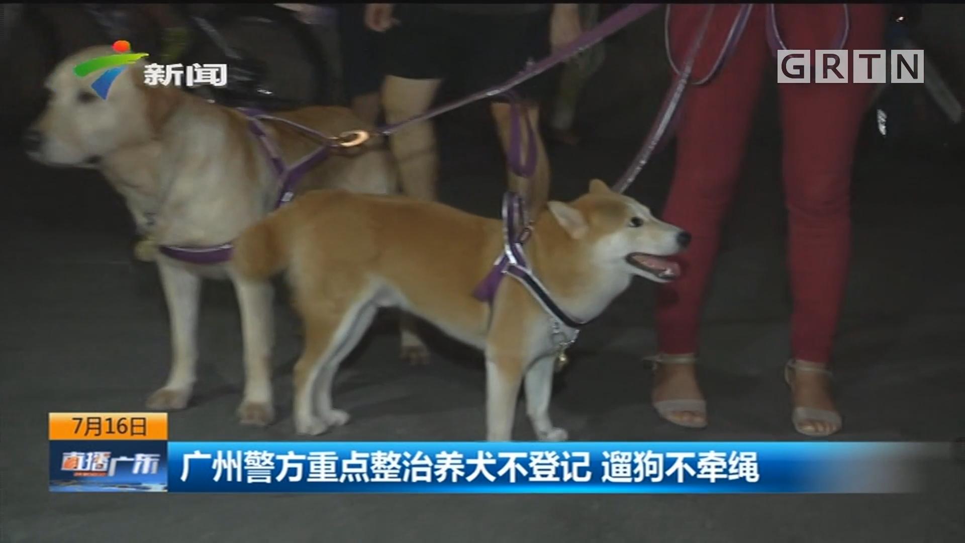 广州警方重点整治养犬不登记 遛狗不牵绳