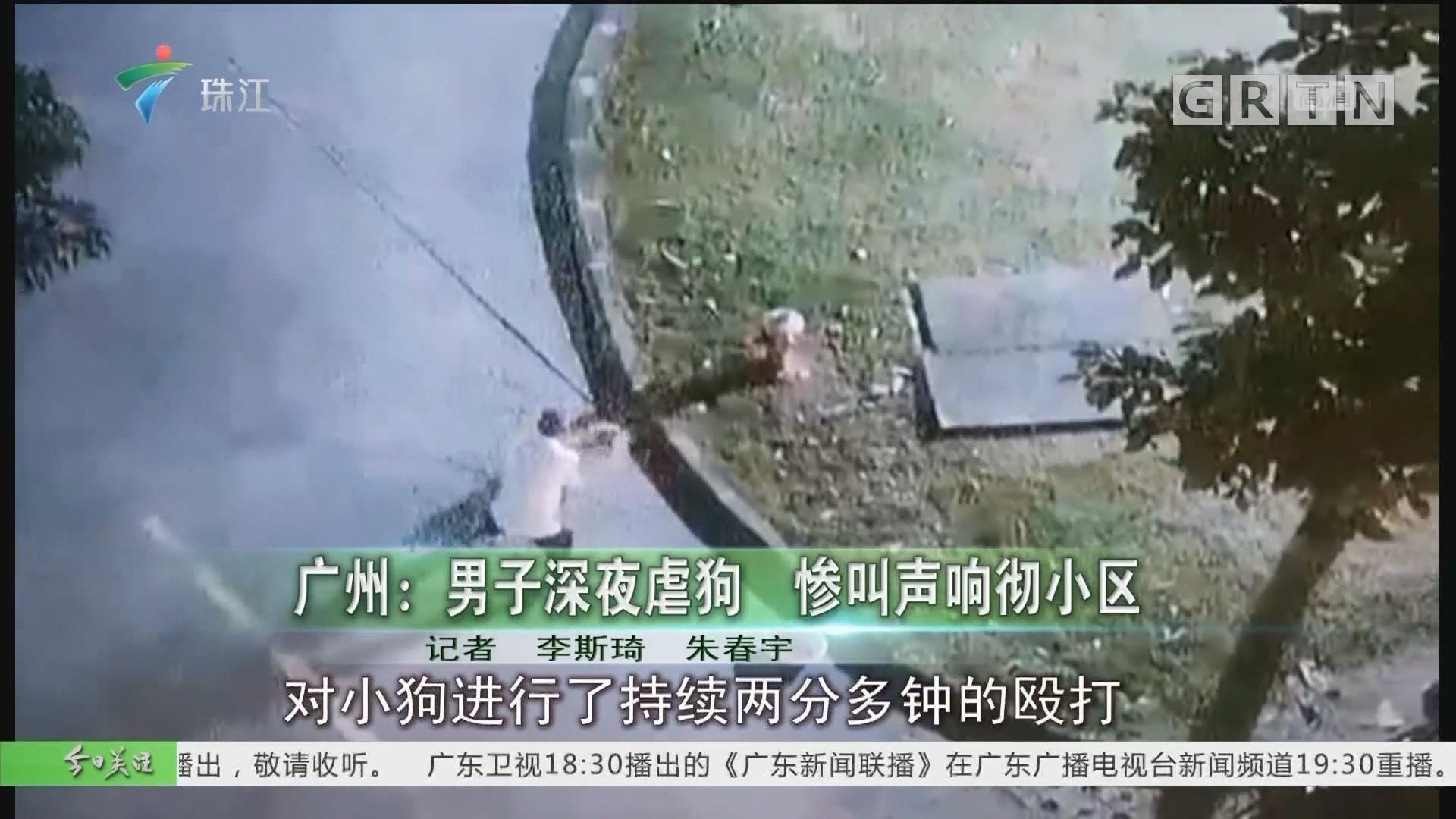 广州:男子深夜虐狗 惨叫声响彻小区