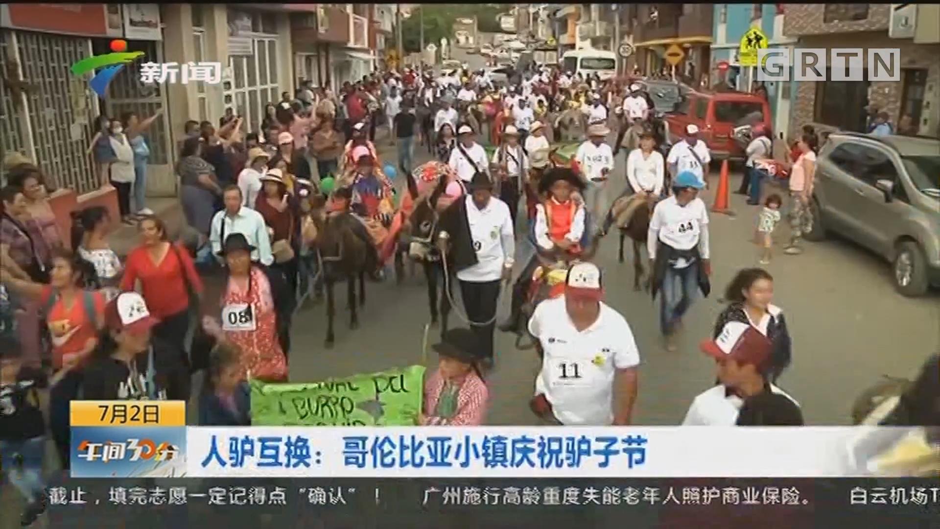 人驴互换:哥伦比亚小镇庆祝驴子节