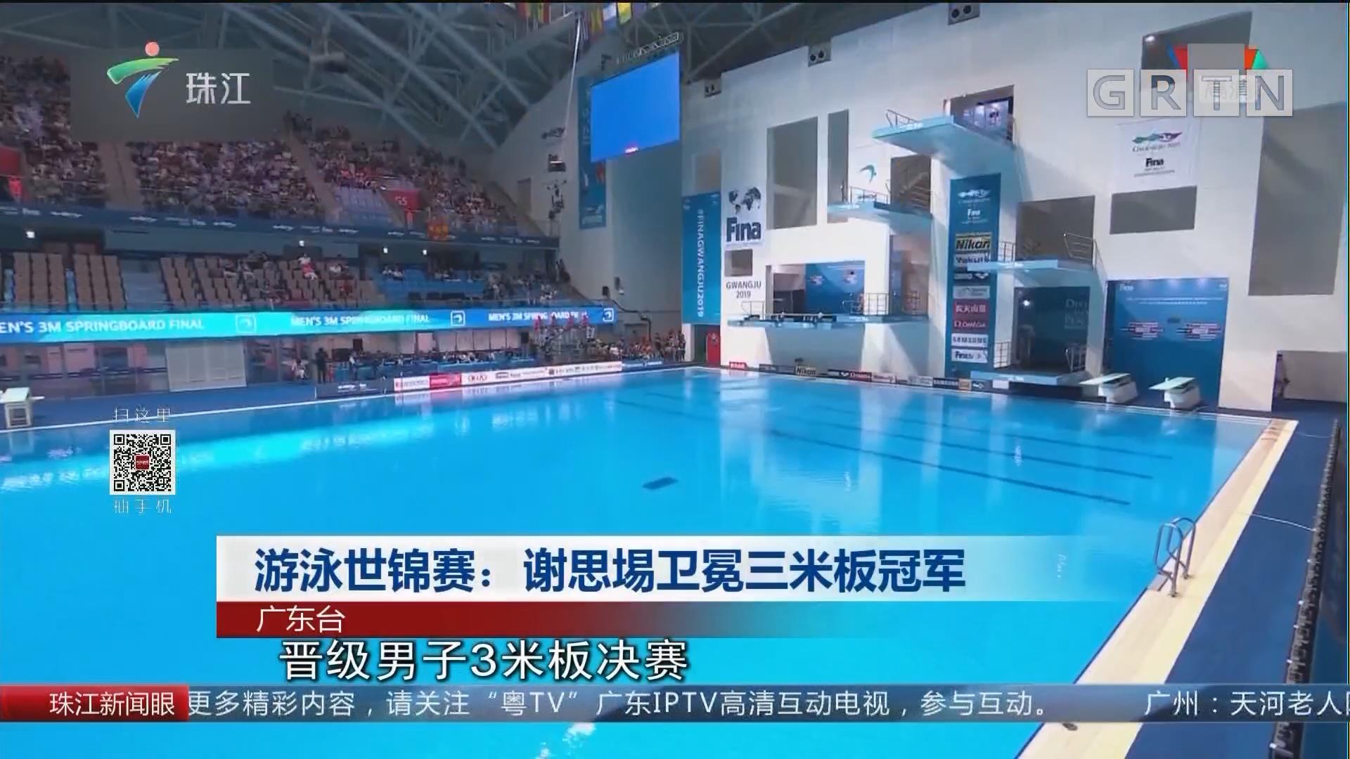 游泳世锦赛:谢思埸卫冕三米板冠军