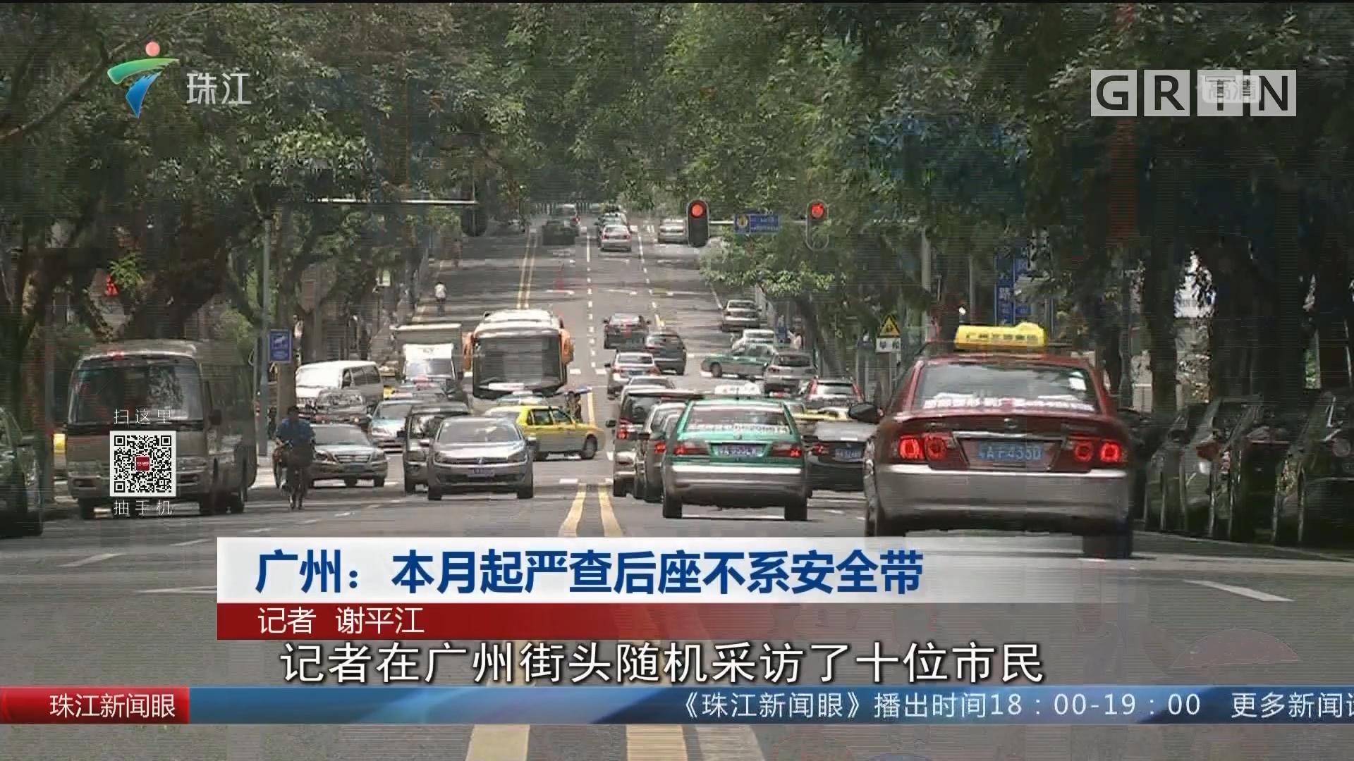 广州:本月起严查后座不系安全带