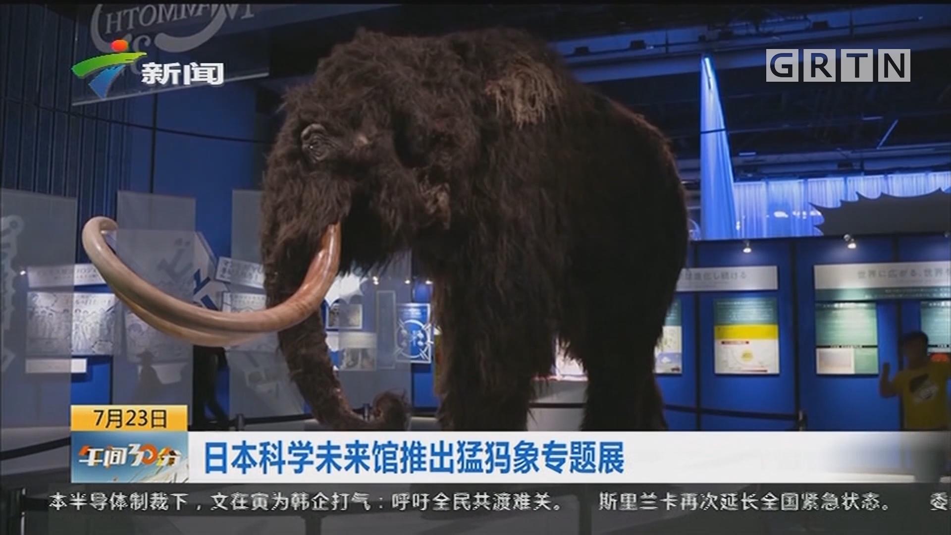日本科学未来馆推出猛犸象专题展