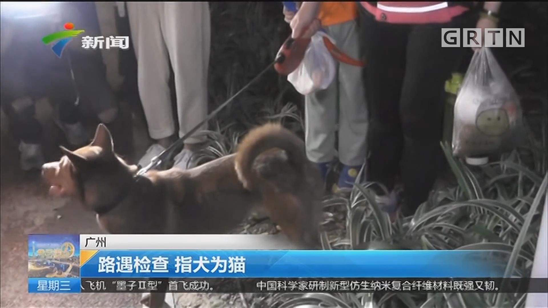 广州:路遇检查 指犬为猫