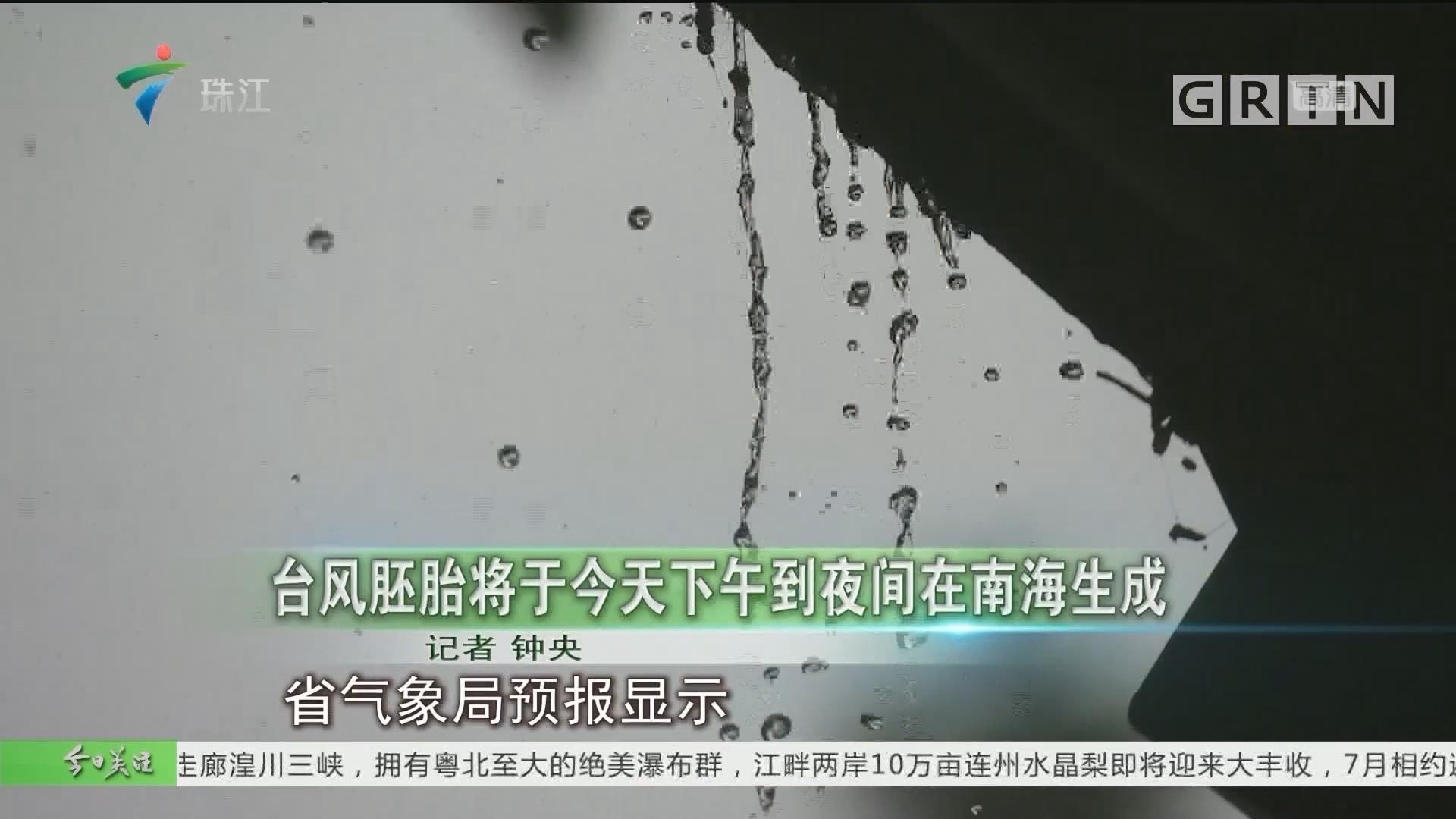 台风胚胎将于今天下午到夜间在南海生成