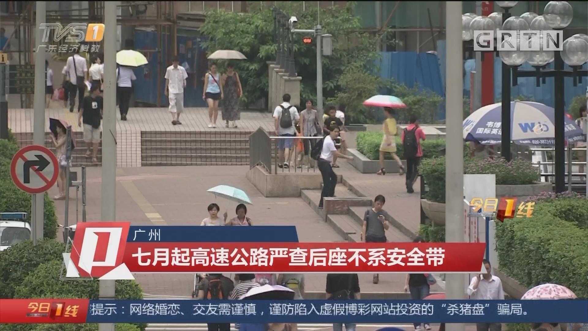 广州:七月起高速公路严查后座不系安全带