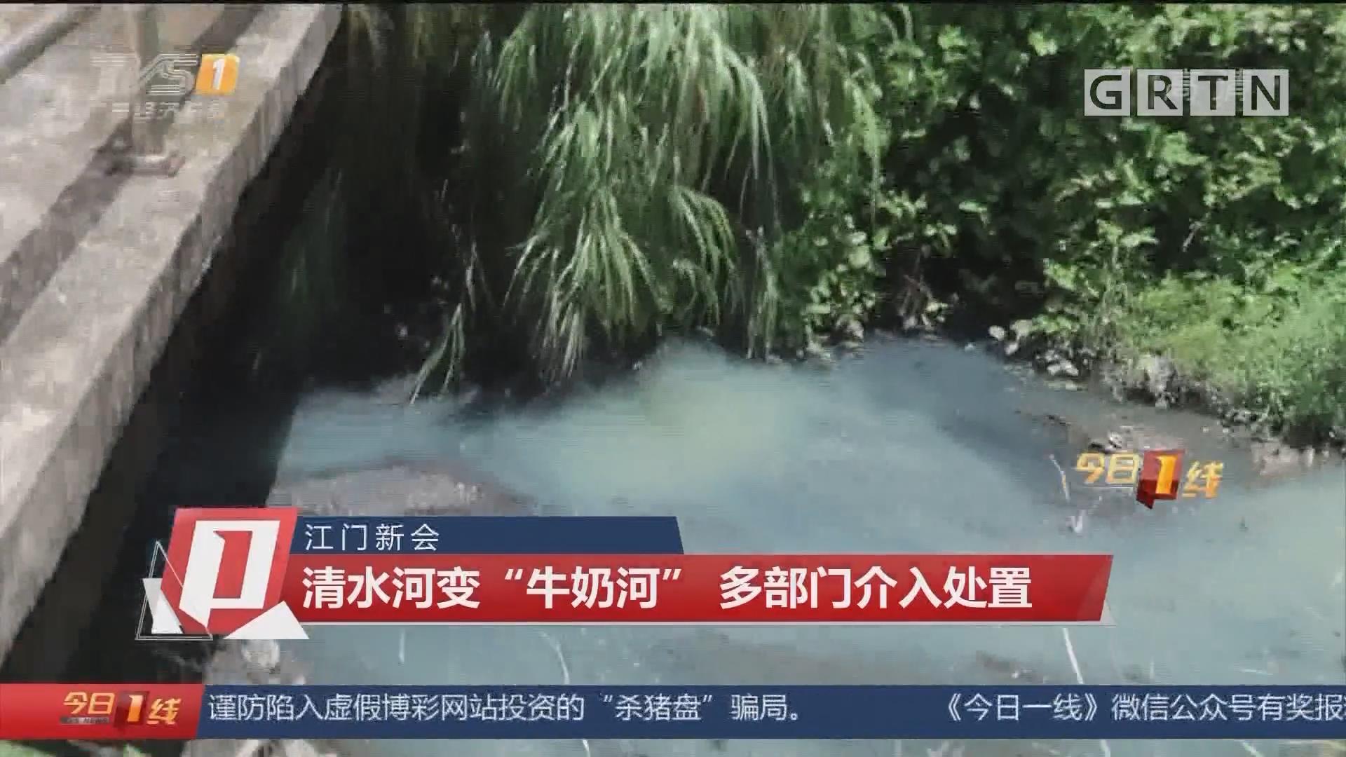 """江口新会:清水河变""""牛奶河"""" 多部门介入处置"""