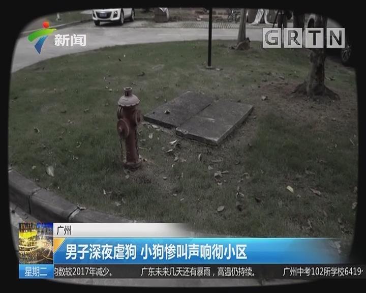广州:男子深夜虐狗 小狗惨叫声响彻小区