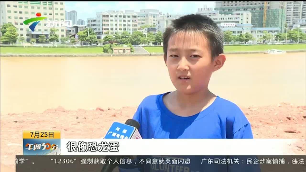 """10岁男孩扒出一窝""""石蛋"""" 专家鉴定为恐龙蛋化石"""