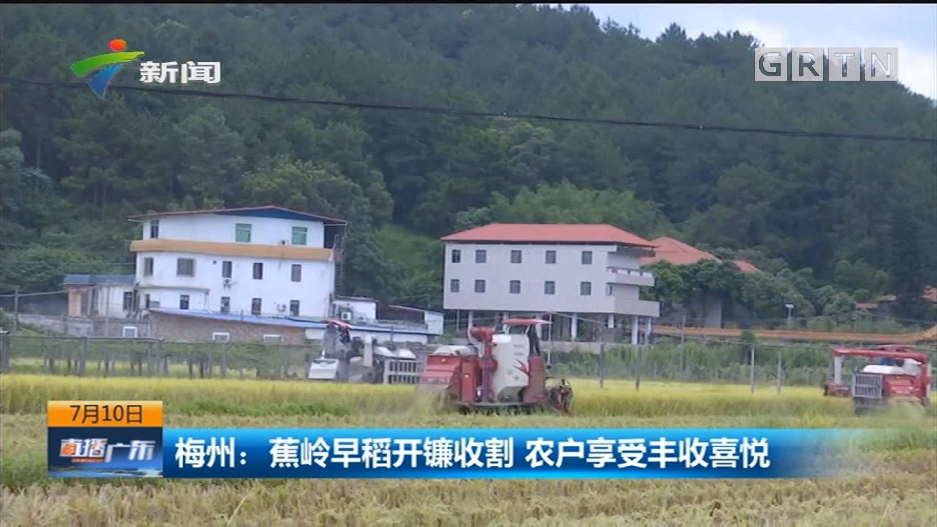 梅州:蕉岭早稻开镰收割 农户享受丰收喜悦
