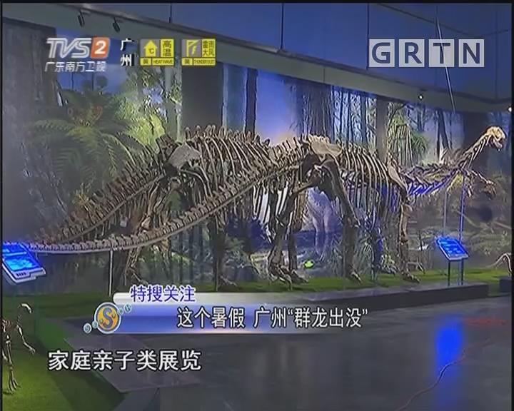 """这个暑假 广州""""群龙出没"""""""