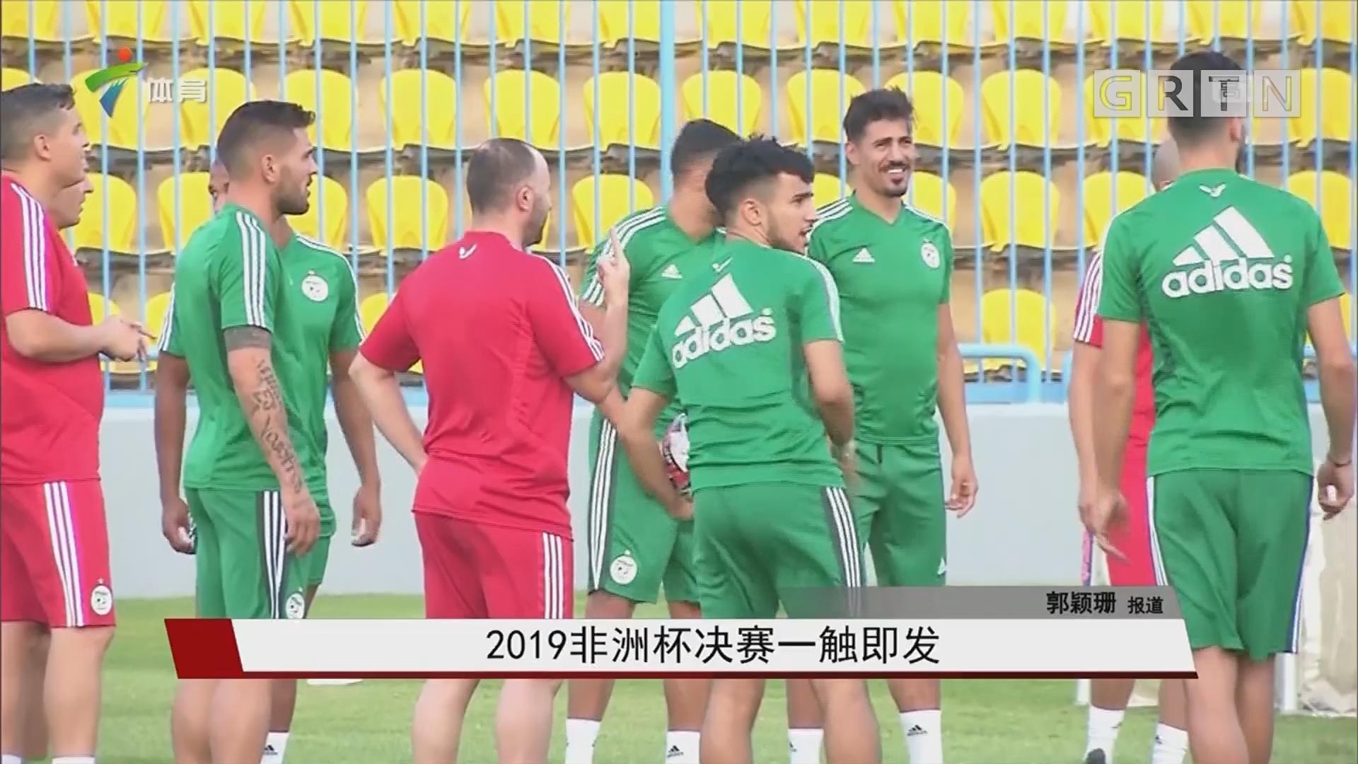 2019非洲杯决赛一触即发