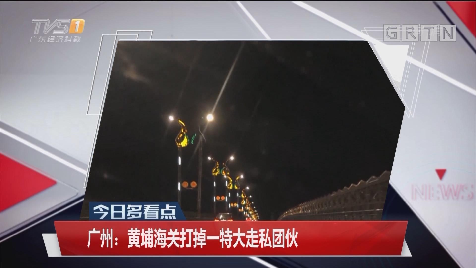广州:黄埔海关打掉一特大走私团伙
