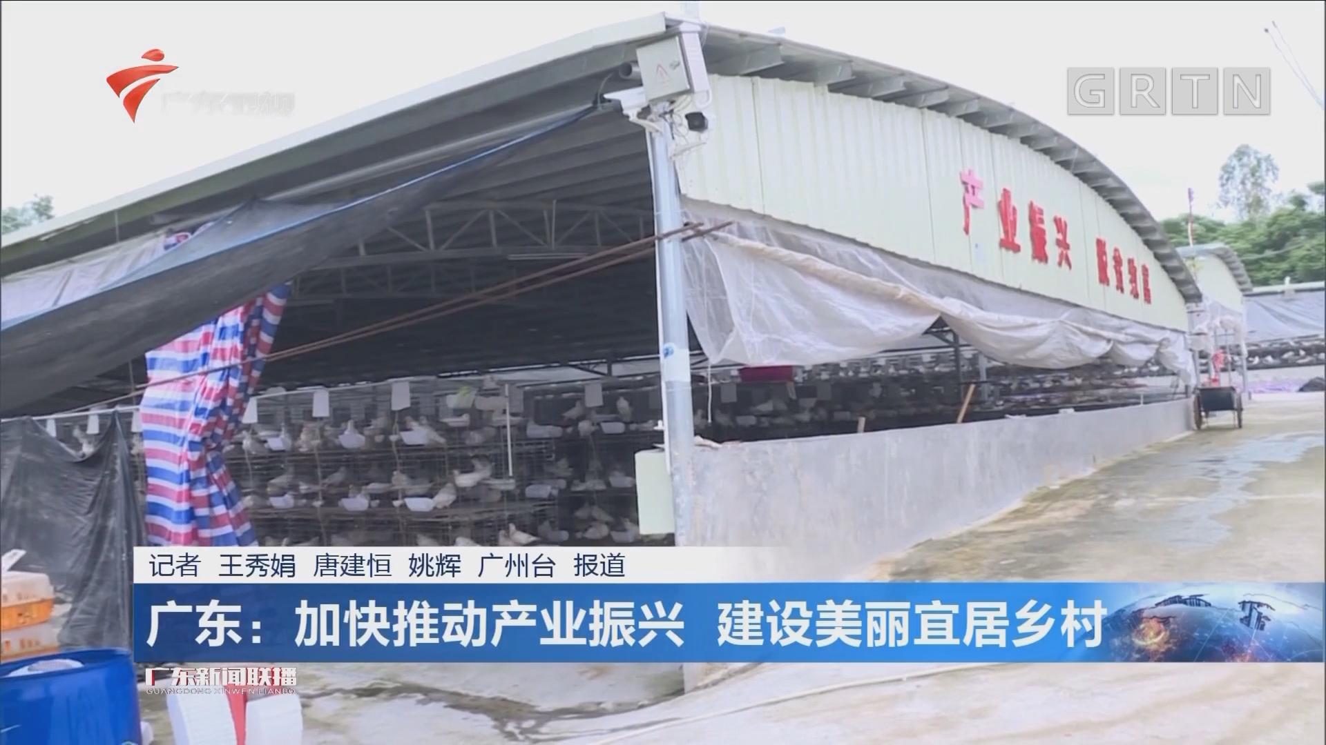 广东:加快推动产业振兴 建设美丽宜居乡村