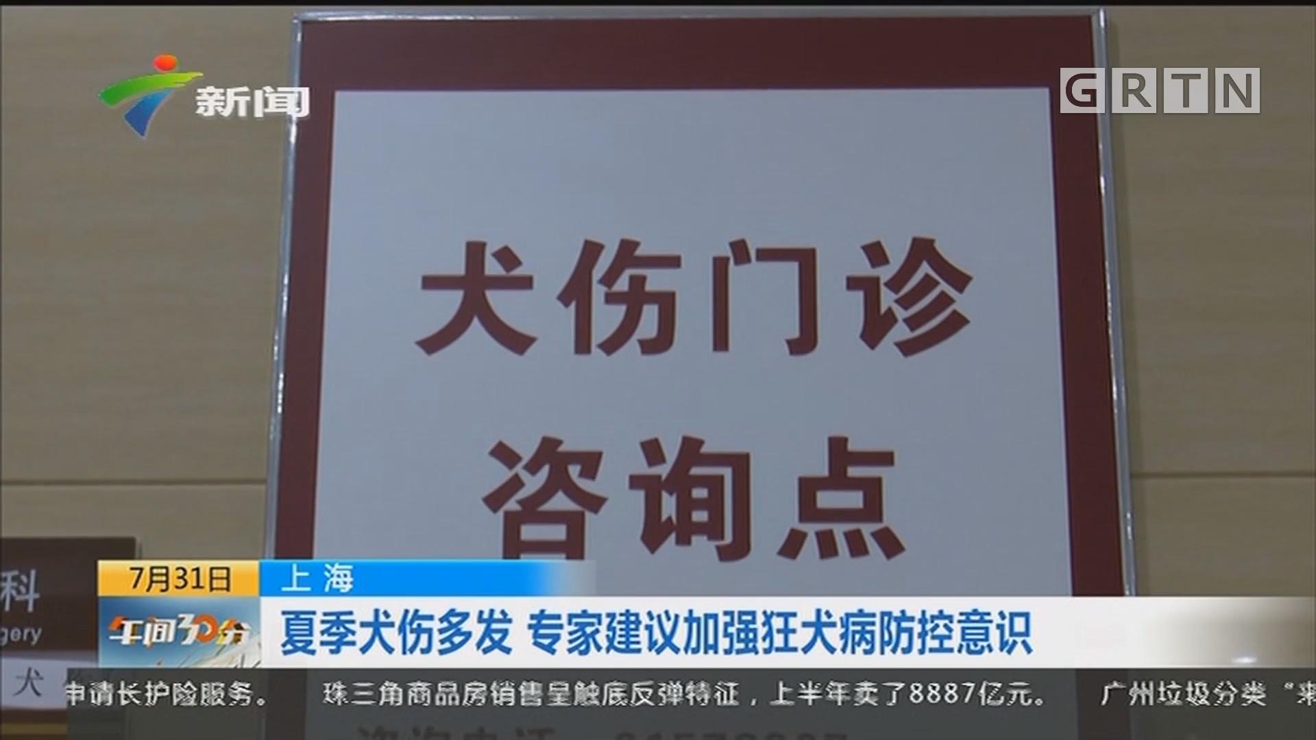 上海:夏季犬伤多发 专家建议加强狂犬病防控意识