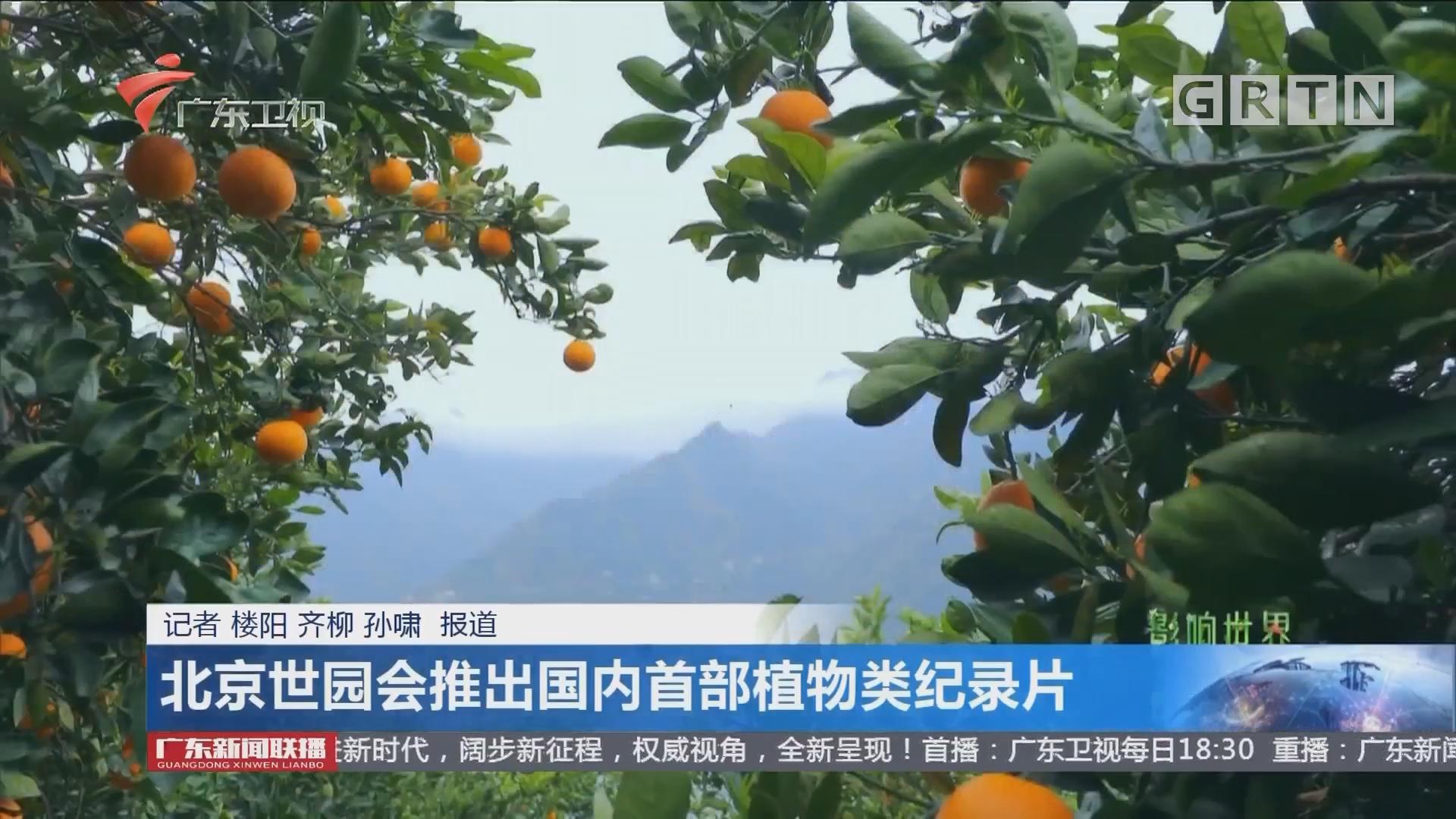 北京世园会推出国内首部植物类纪录片