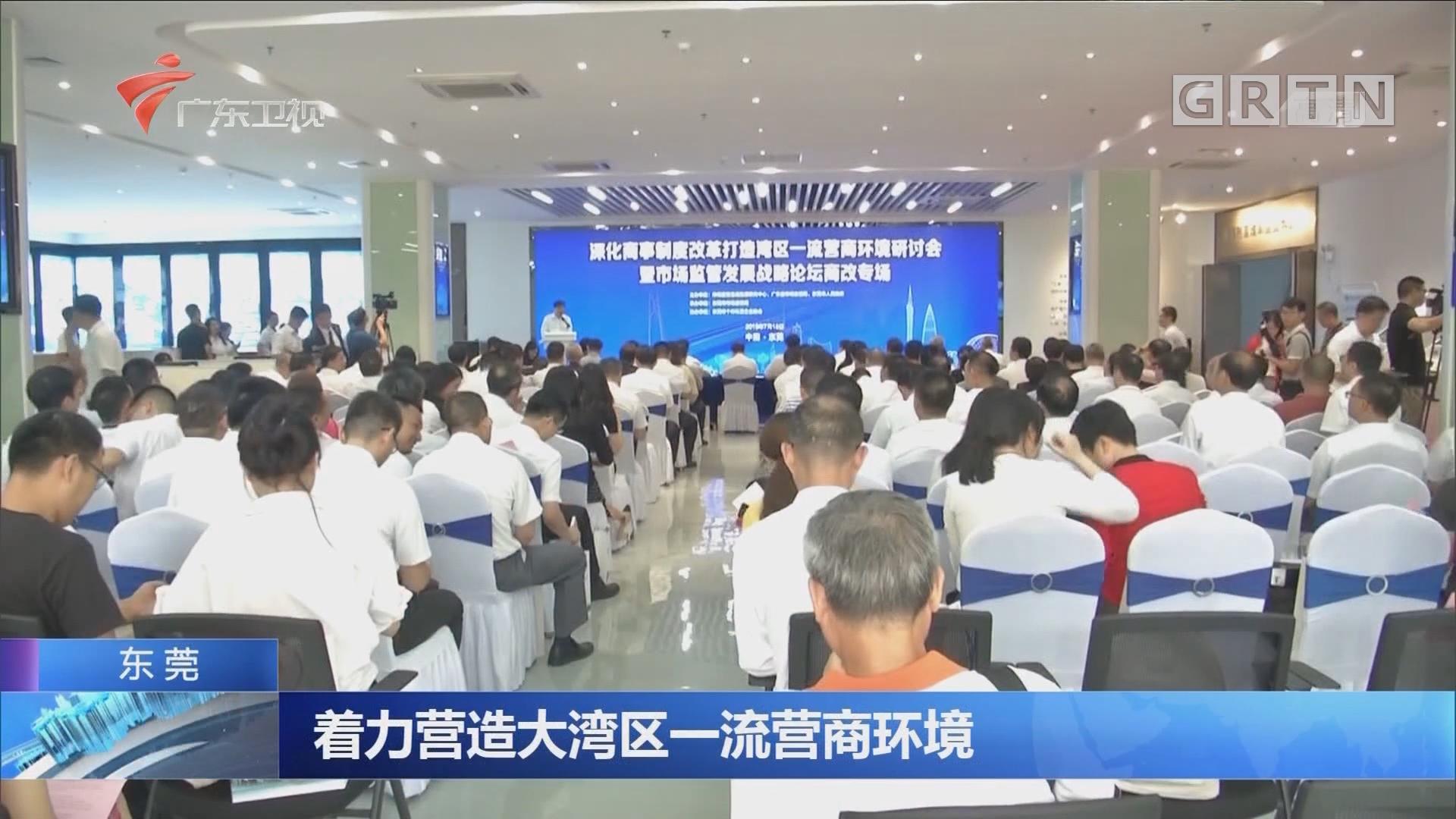 东莞:着力营造大湾区一流营商环境