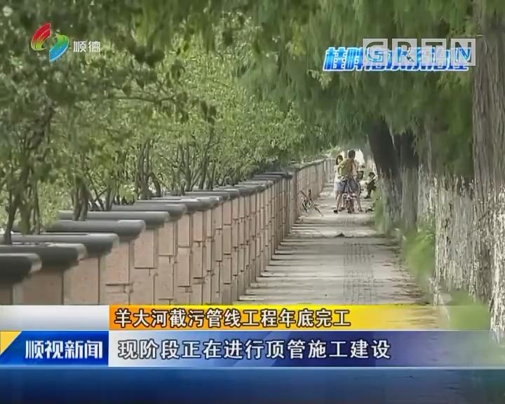 羊大河截污管线工程年底完工